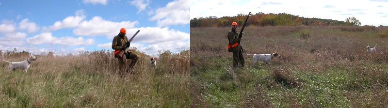 Boone and his son Garrett traing on Quail in Heratland, Michigan