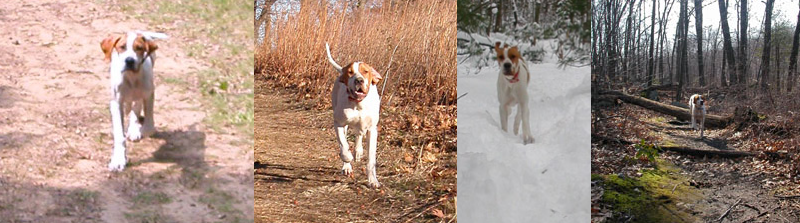 Garrett at Lake Chauncy in Massachusetts from six months to one year of age.